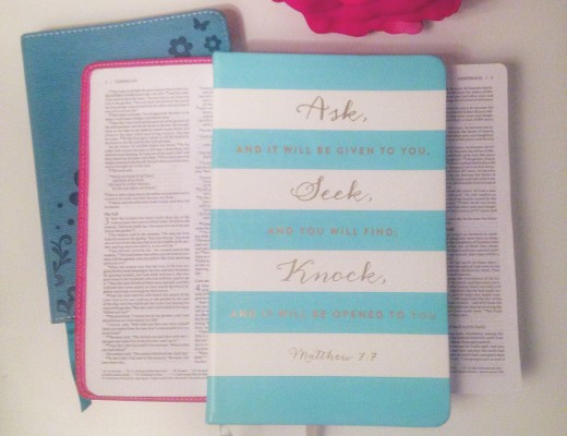 Ask Seek Knock Journal on Bible - Crockpot Empire