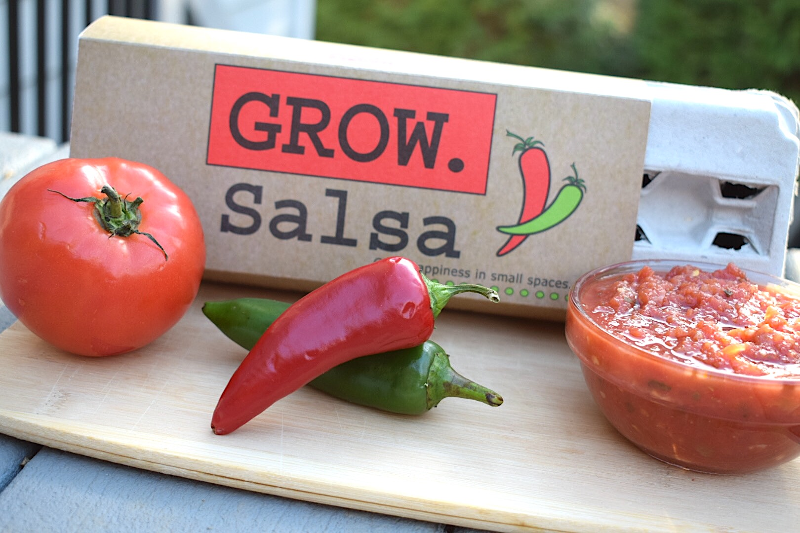 Grow Salsa Egg Carton Garden by Backyard Safari Co