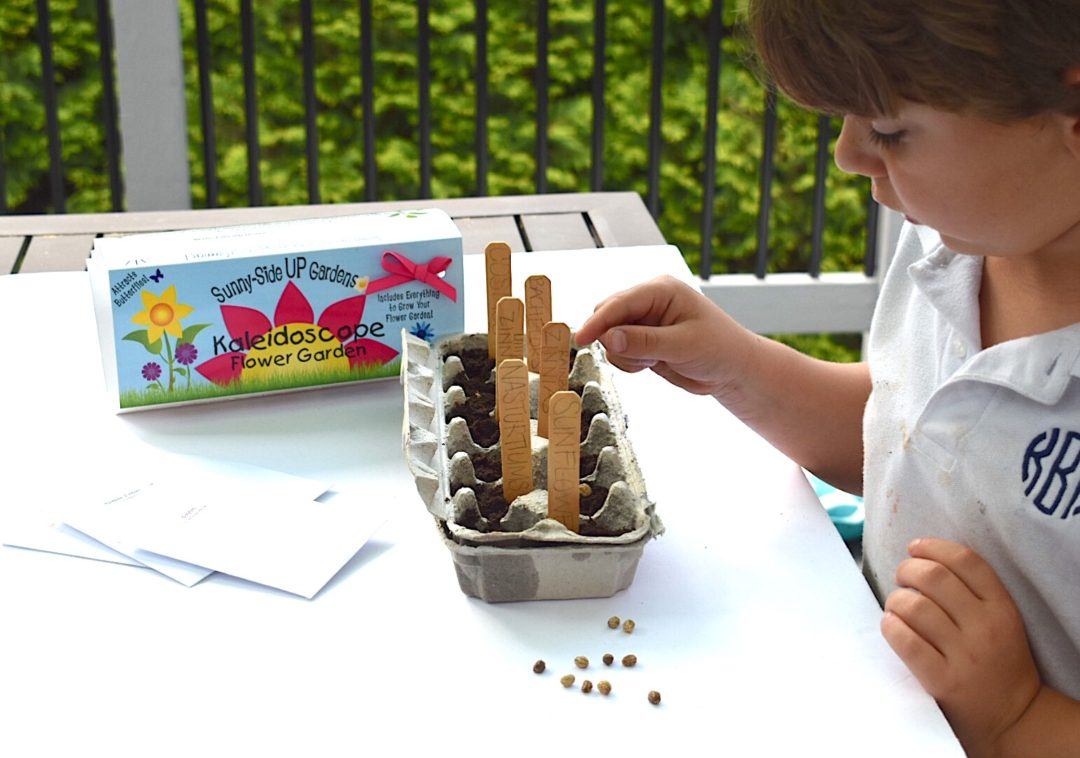 Beau Knox Planting His Seeds For His Sunny Side UP Egg Carton Gardening Kits By  Backyard