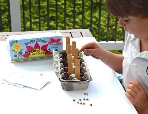 Knox planting his seeds for his Sunny-Side UP egg carton gardening kits by Backyard Safari Company