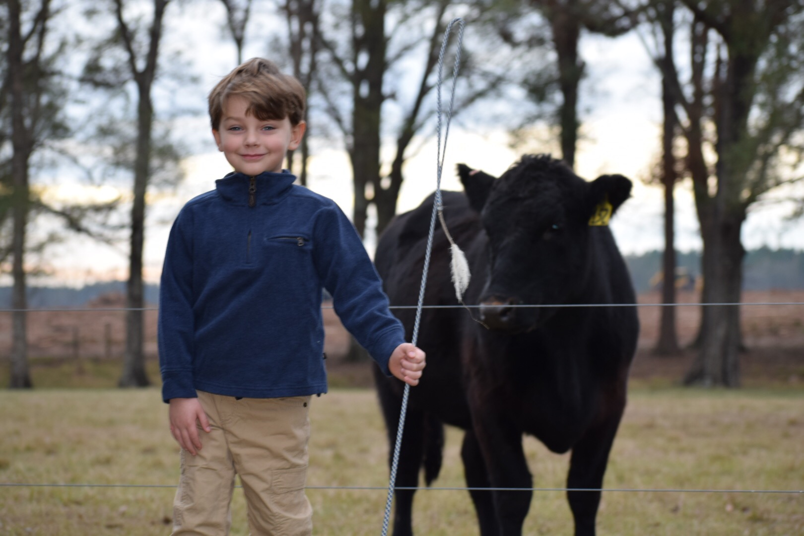 New Year, Same God - Knox Bishop with a cow whip and an Angus Brahma
